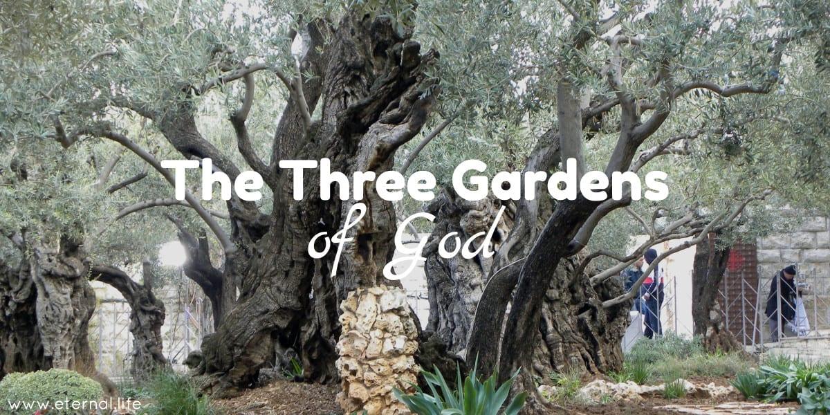 3-gardens-god