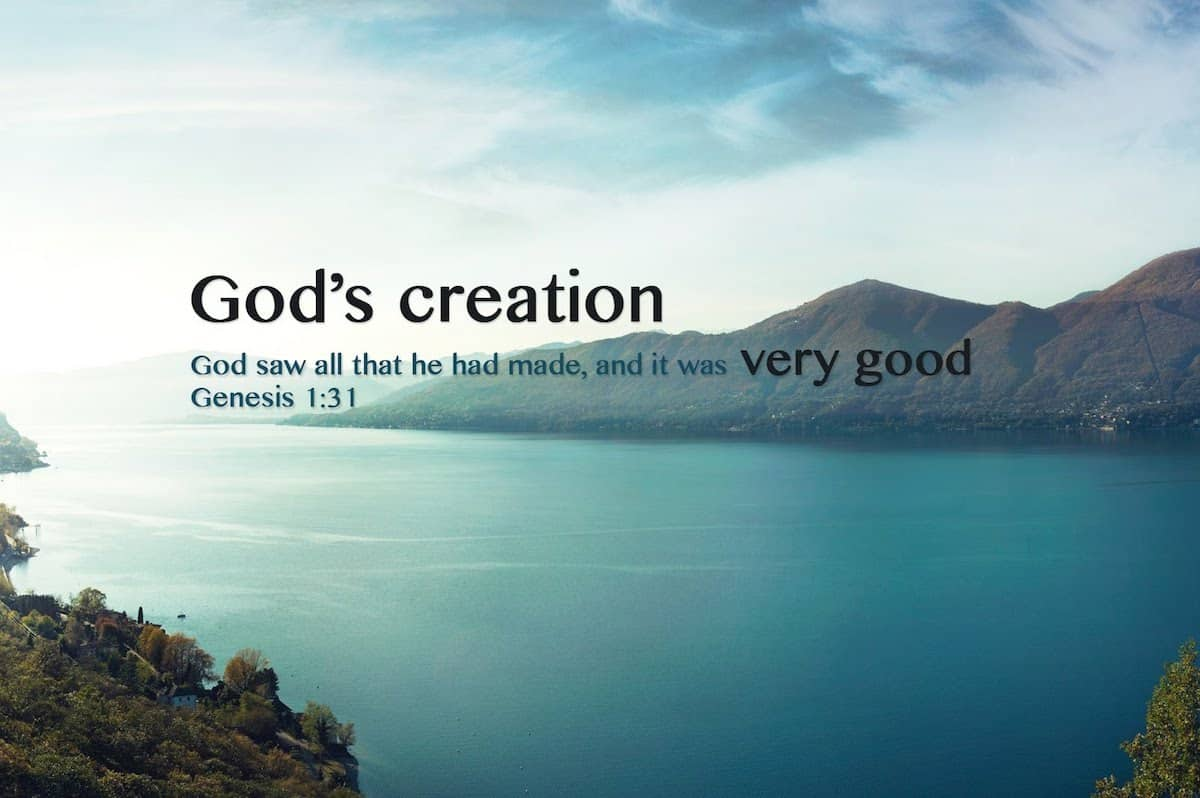 You've never seen God's Creation explained this way ...